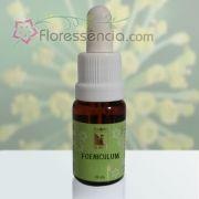 Foeniculum - 10 ml