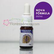 Fórmula Espiritualidade e Meditação - 10 ml