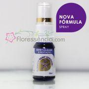 Fórmula Espiritualidade e Meditação Spray uso oral - 10 ml