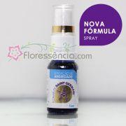 Fórmula Sensação de Ansiedade Spray uso oral - 10 ml