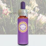 Frésia - 10 ml