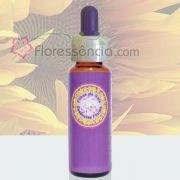 Girassol - 10 ml