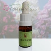 Heliotropium - 10 ml