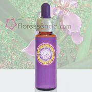 Iris - Filhas de Gaia -  10 ml
