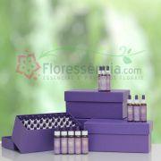 Kit Completo Florais Filhas de Gaia - 126 Frascos
