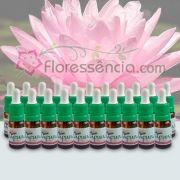Kit Florais Iapuna - 21 Frascos - 10 ml