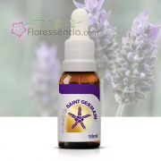 Lavanda de Saint Germain - 10 ml