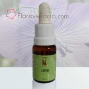 Linum - 10 ml