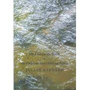 Livro Os Florais de Bach e os Padrões Inscritos na Água - Julian Barnad