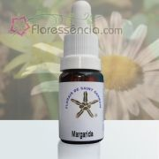 Margarida de Saint Germain - 10 ml