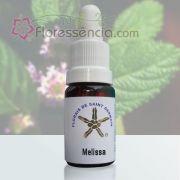 Melissa - 10 ml