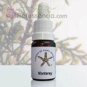 Monterey - 10 ml
