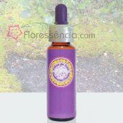 Musgo - 10 ml