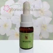Myosotis - 10 ml