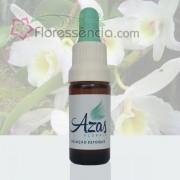 Orquídea Branca - 10 ml