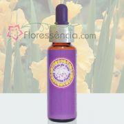 Palma Amarela - 10 ml