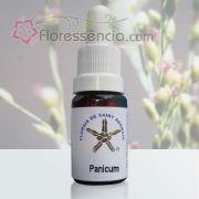 Panicum - 10 ml