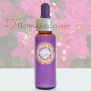 Primavera - 10 ml