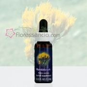 Rabbitbrush - 7,5 ml