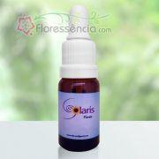 Respiração Essencial - 10 ml