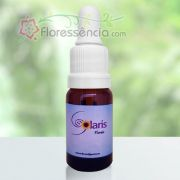 Rosas - 10 ml