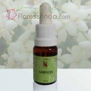 Sambucus - 10 ml