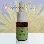 Sonchus - 10 ml