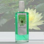 Spray Ambiental Família - 100 ml