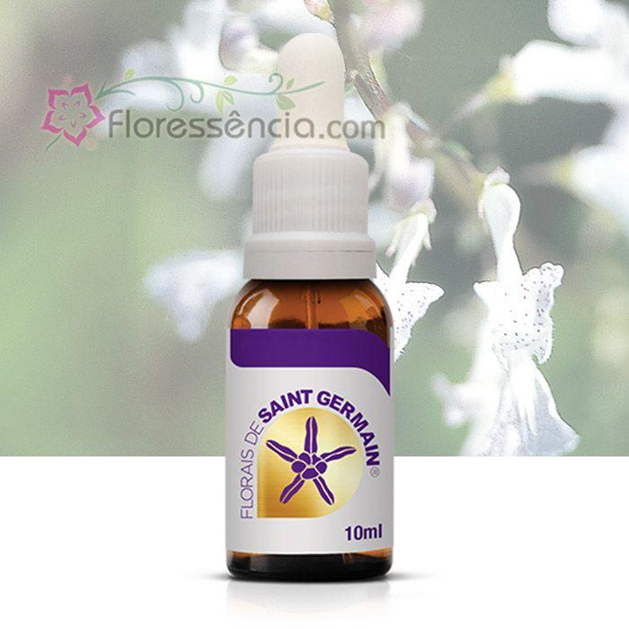 Abundância - 10 ml  - Floressência
