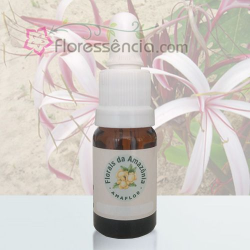 Açucena - 10 ml  - Floressência