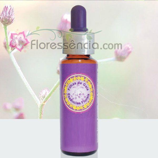 Assa Peixe - 10 ml  - Floressência