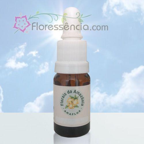 Balum - 10 ml  - Floressência