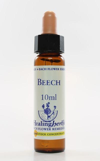 Beech - 10 ml  - Floressência