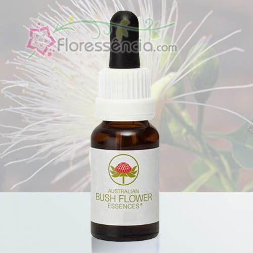 Billy Goat Plum - 15 ml  - Floressência
