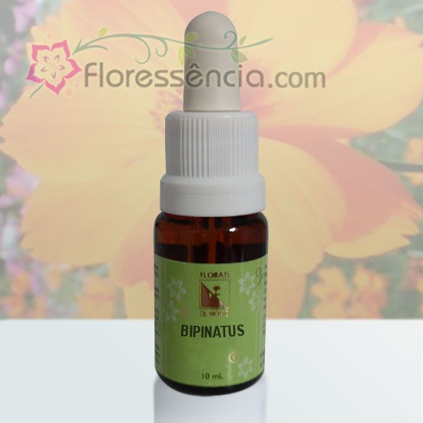 Bipinatus - 10 ml  - Floressência