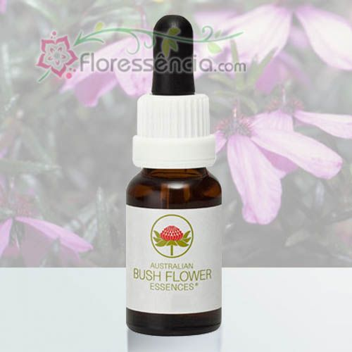 Black-eyed Susan - 15 ml  - Floressência