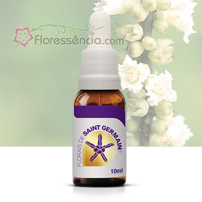 Boa Sorte - 10 ml  - Floressência