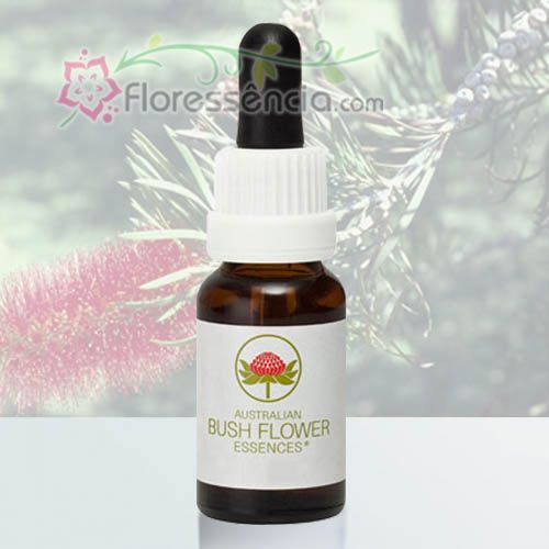 Bottlebrush - 15 ml  - Floressência