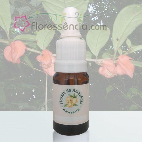 Brinco de Princesa da Mata - 10 ml  - Floressência