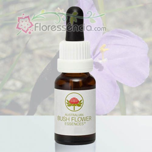 Bush Iris - 15 ml  - Floressência