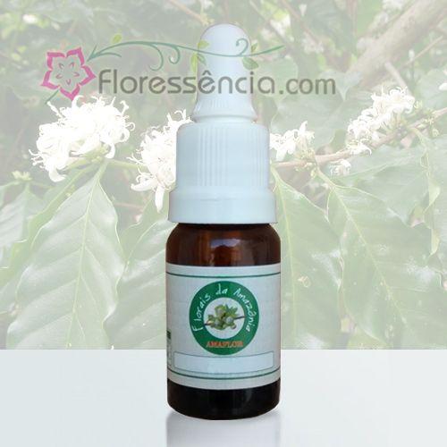 Café - 10 ml  - Floressência