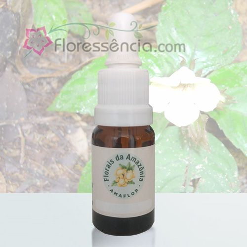 Campainha - 10 ml  - Floressência
