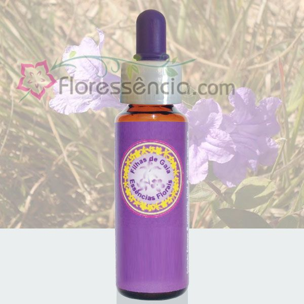 Campânula Lilás - 10 ml  - Floressência