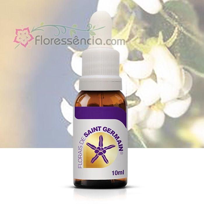 Canela - 10 ml  - Floressência