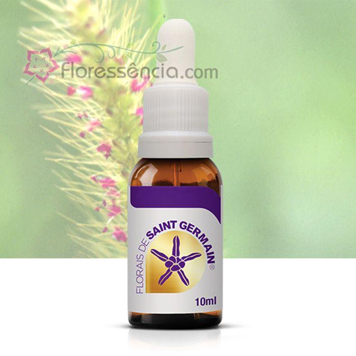 Capim Luz - 10 ml  - Floressência