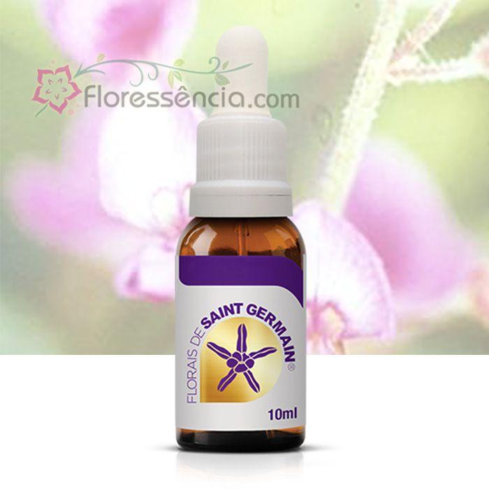 Carrapichão - 10 ml  - Floressência