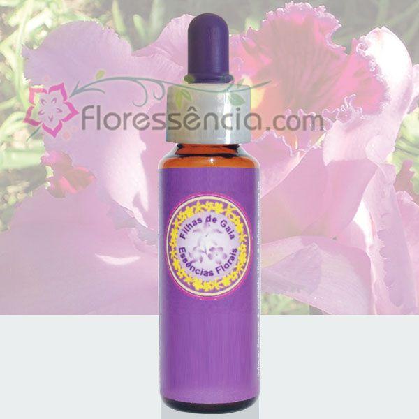 Catléia Rainha - 10 ml  - Floressência