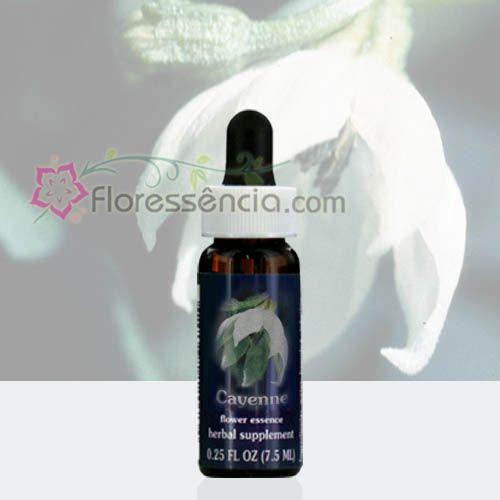 Cayenne  - Floressência
