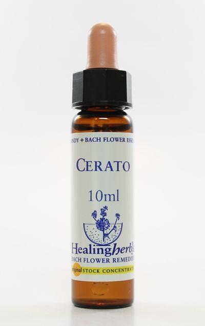 Cerato - 10 ml  - Floressência