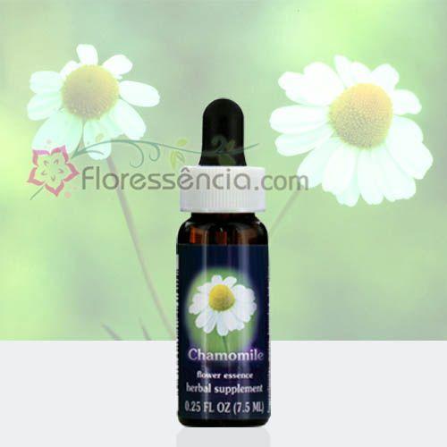Chamomile - 7,5 ml  - Floressência